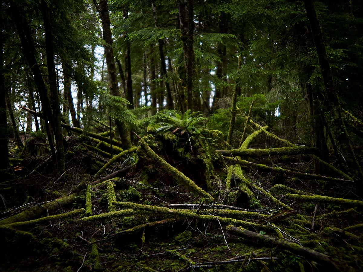 Sointula, British Columbia.