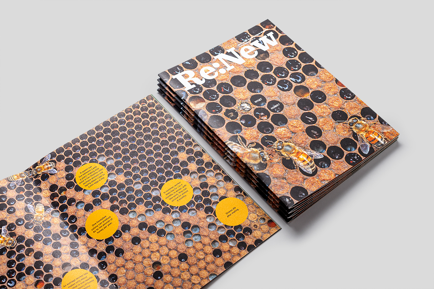 Magazine cover and interior pages showing images of bee hive and bees.