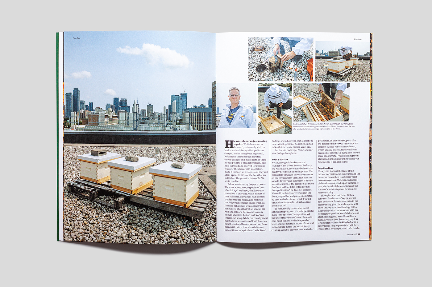 Magazine spread showing images of bees and beekeeper.