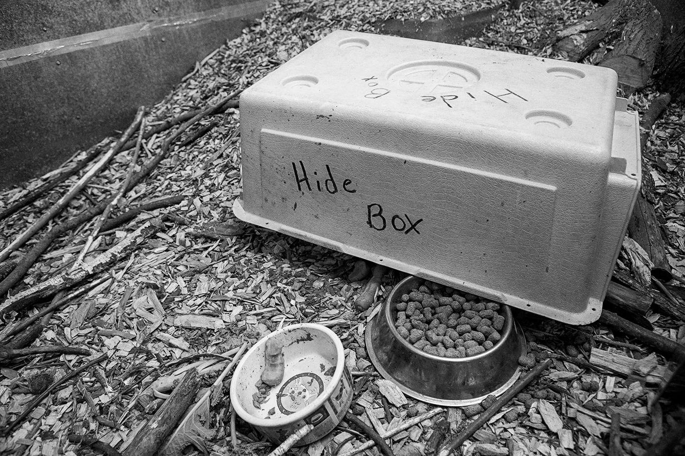 "An overturned box labelled ""Hide Box"" at the Toronto Wildlife Centre"