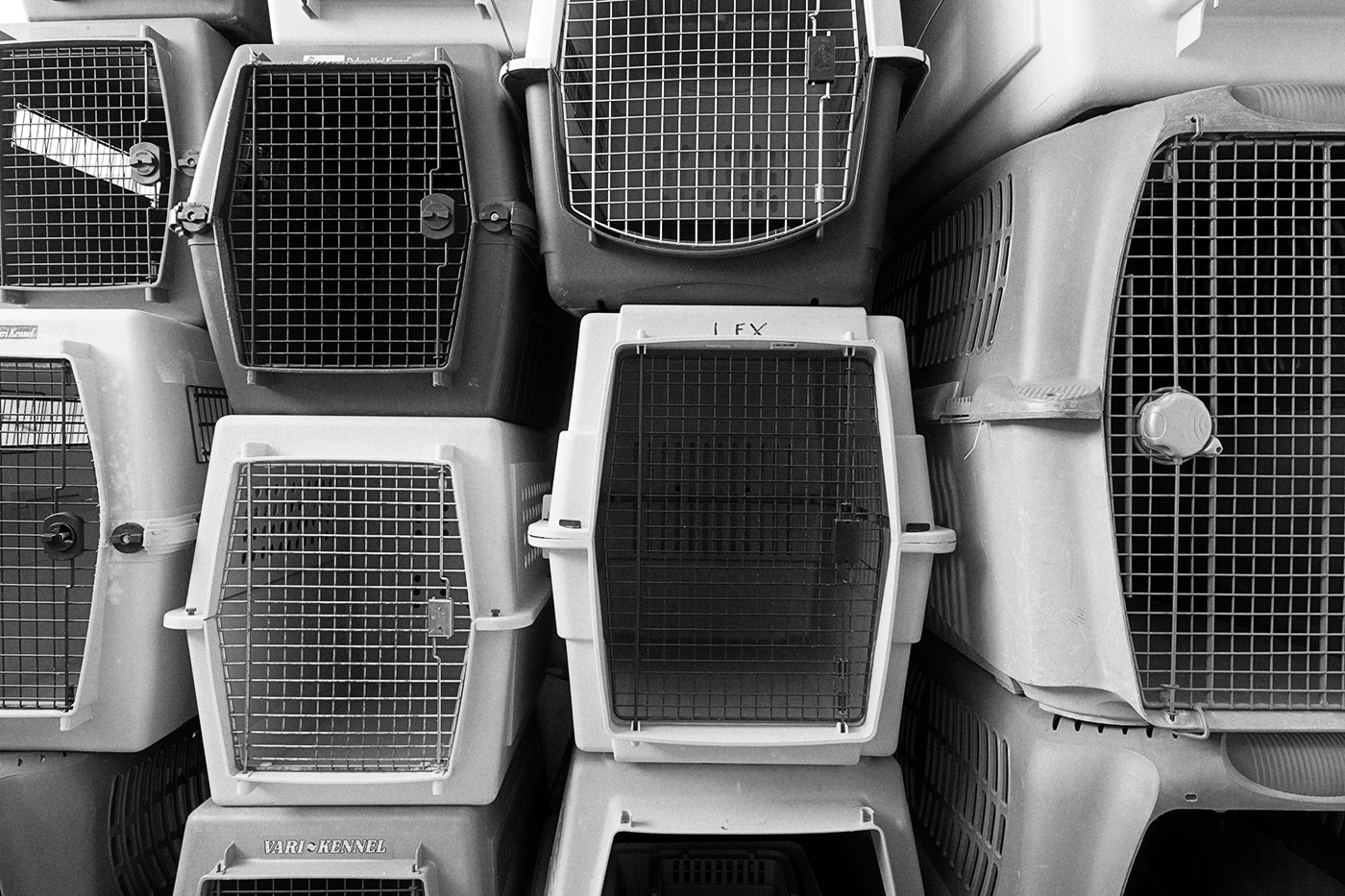 Kennel crates at the Toronto Wildlife Centre