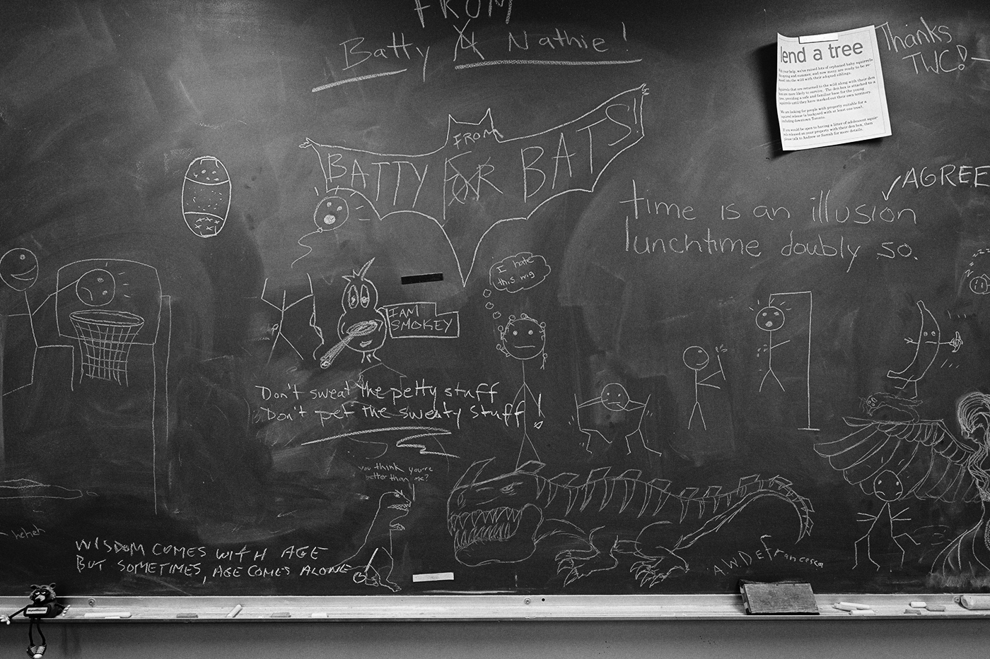 Blackboard with chalk drawins at the Toronto Wildlife Centre