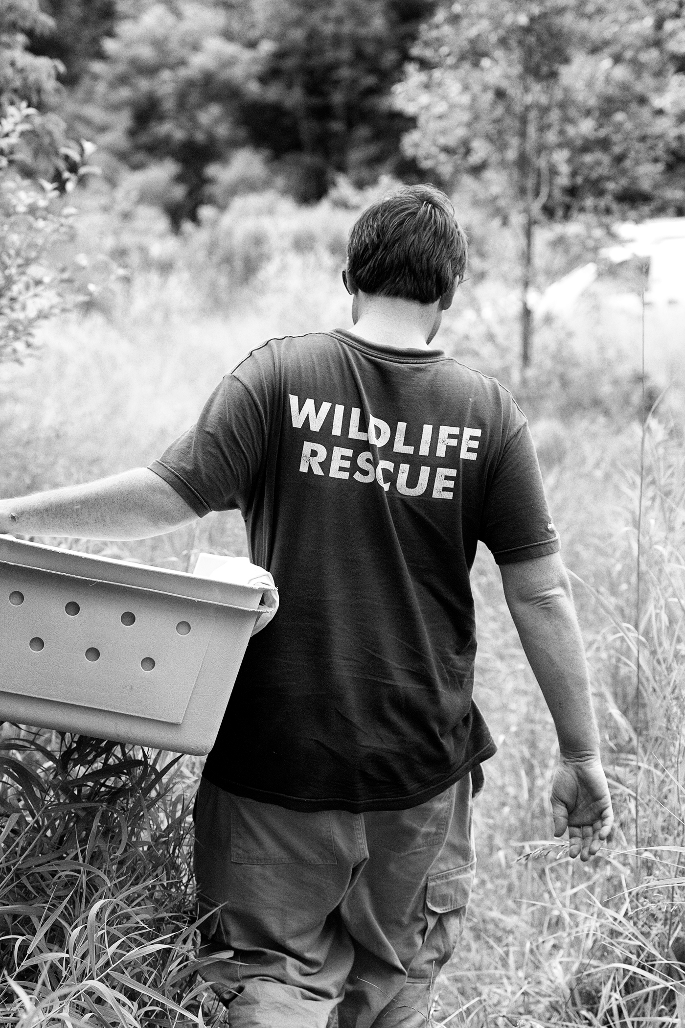 "A man wearing a shirt reading ""Wildlife Rescue"" carries a crate in a field."